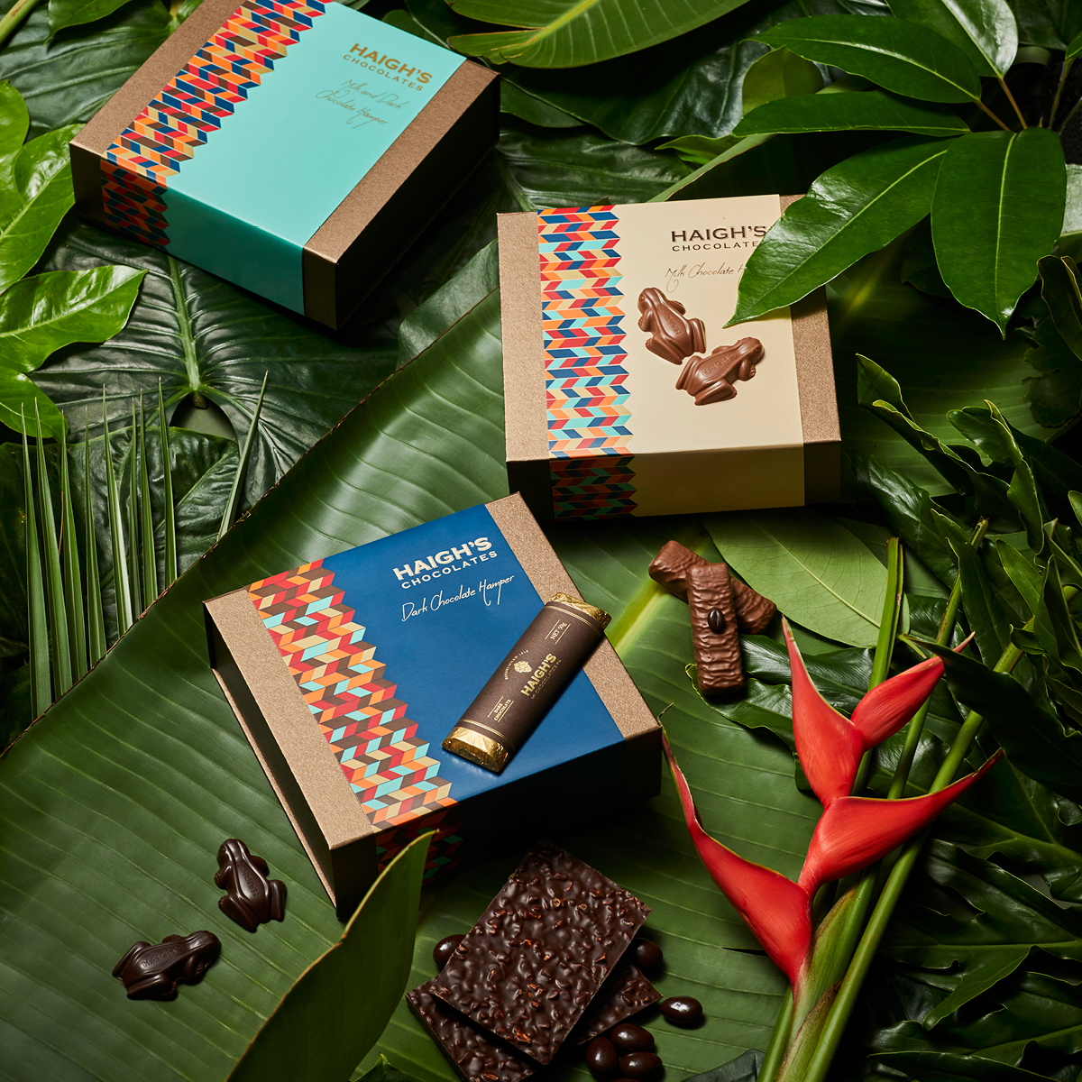 The Origins of Chocolate